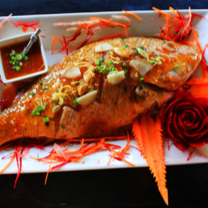 1789-redsnapper-1